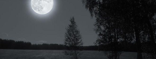 Under a Misty Moon