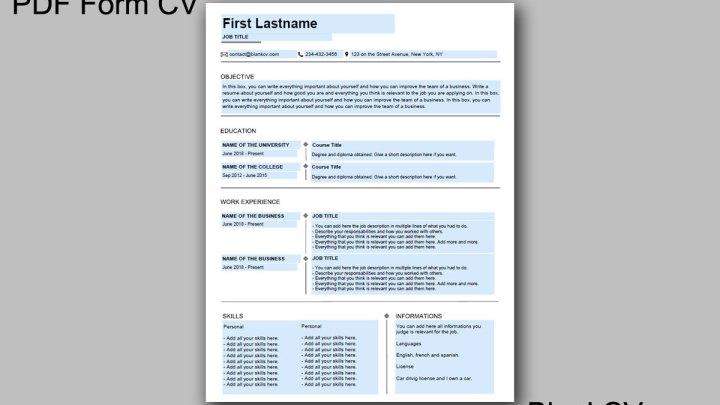 One Page Classic PDF Form CV