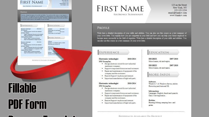 Fillable PDF Form Resume Template #9