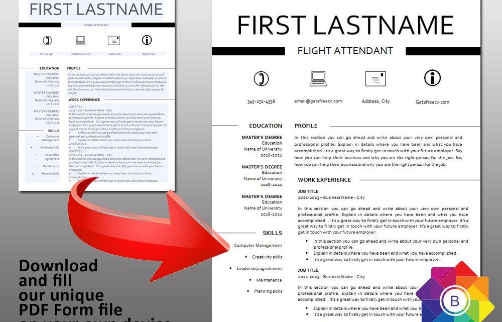 Classic Look PDF form CV Resume