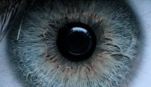 """""""Her eyes, the colour of her eyes were gray..."""""""