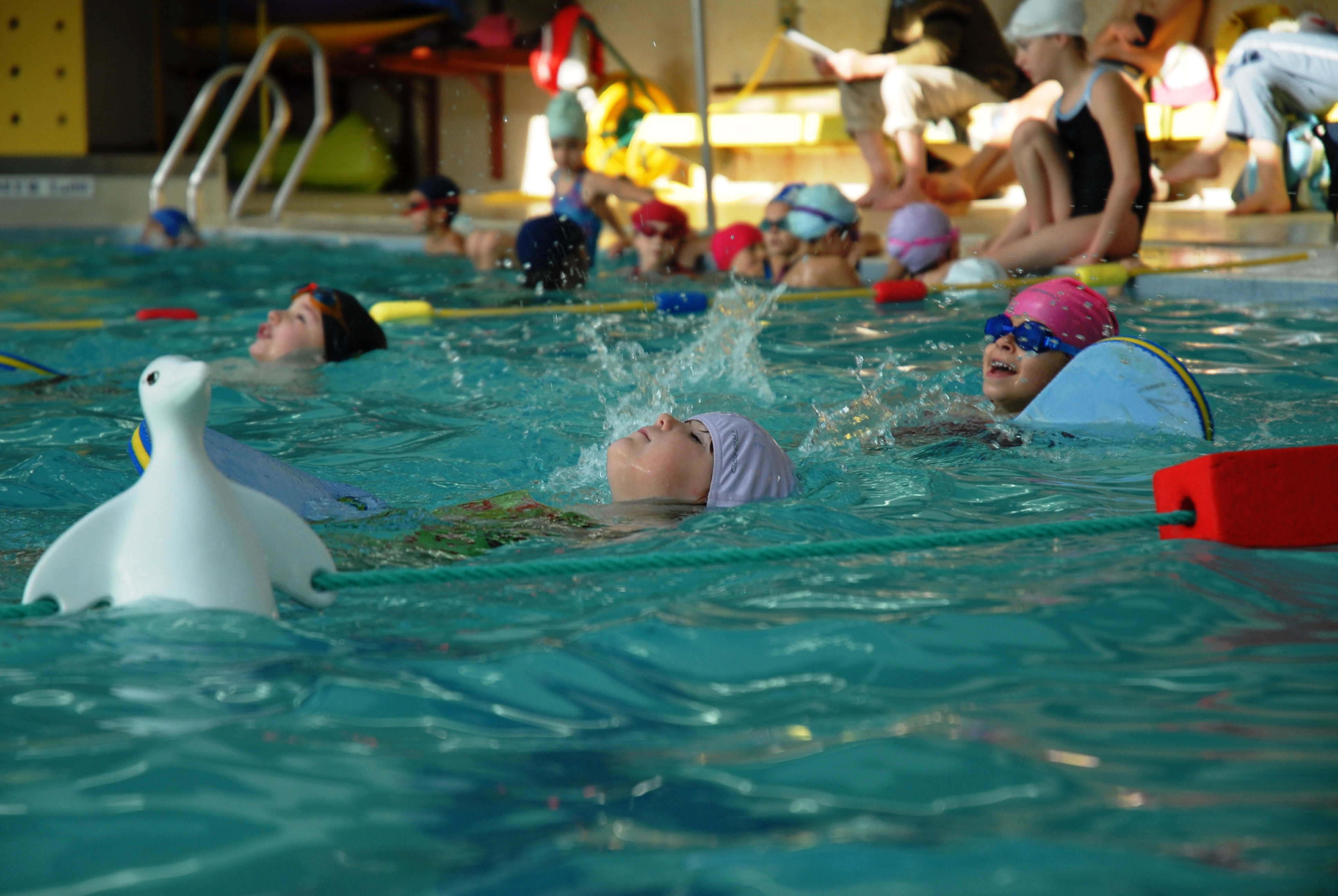 Esb natation pr scolaire entente sportive blanquefortaise for Piscine blanquefort