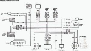 Stock wiring diagrams | Blasterforum
