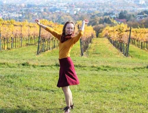 Roter Rock im Hintergrund Weinberge mit Blick auf Wien