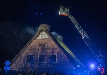 Storchennest und Reetdachhaus durch Feuerwehr geschützt-Schornsteinbrand bei Hamburg
