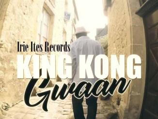 King Kong - Gwaan Video