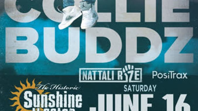 collie buddz flyer