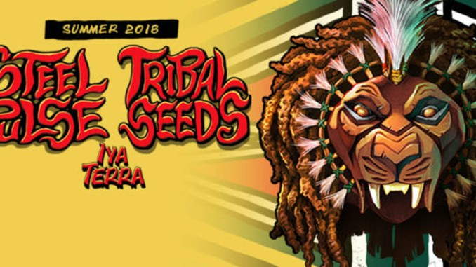 Steel Pulse, Tribla Seeds Banner