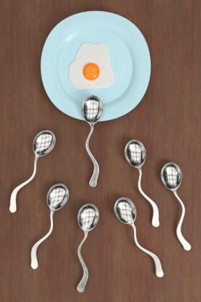 carlos-matias-espermatocharas-compitiendo-por-un-huevo