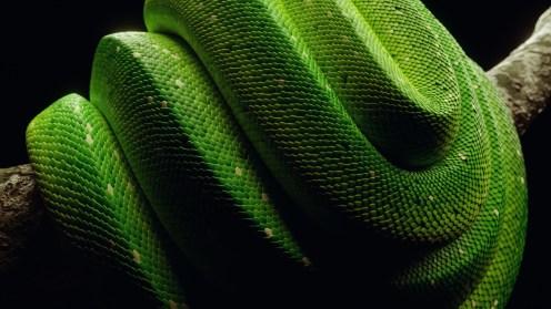 python03-comp