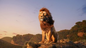 aneesh-arts-main-scene-lion-00000