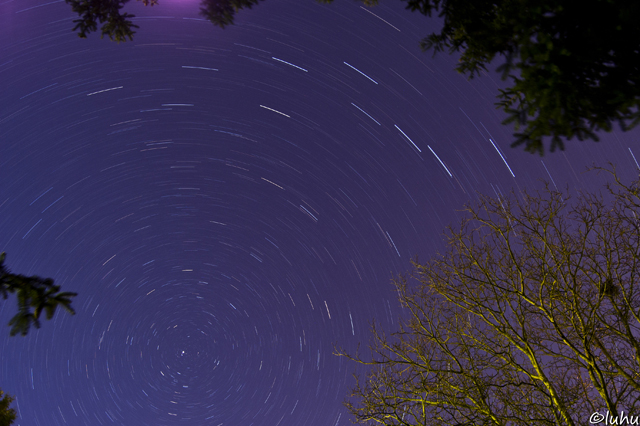 Startrail by Ludwig