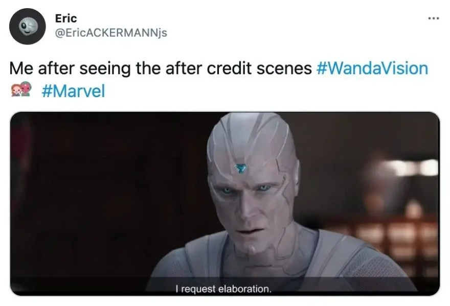 WandaVision Memes 35