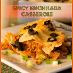 Enchilada Casserole (GF, Vegan, Quick and Spicy!)