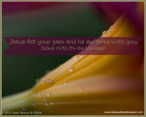 Jesus felt your pain