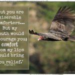 Miserable Comfort