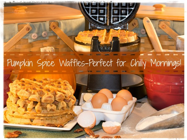 What's YOUR favorite way to eat pumpkin? Try these pumpkin spice waffles! http://wp.me/p2UZoK-z9 via @blestbutstrest
