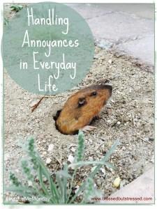 Handling Annoyances in Everyday Life