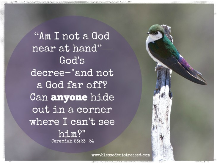 Can anyone hide from God?
