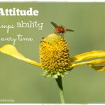 The Vendor and the Beggar: It's all About Attitude