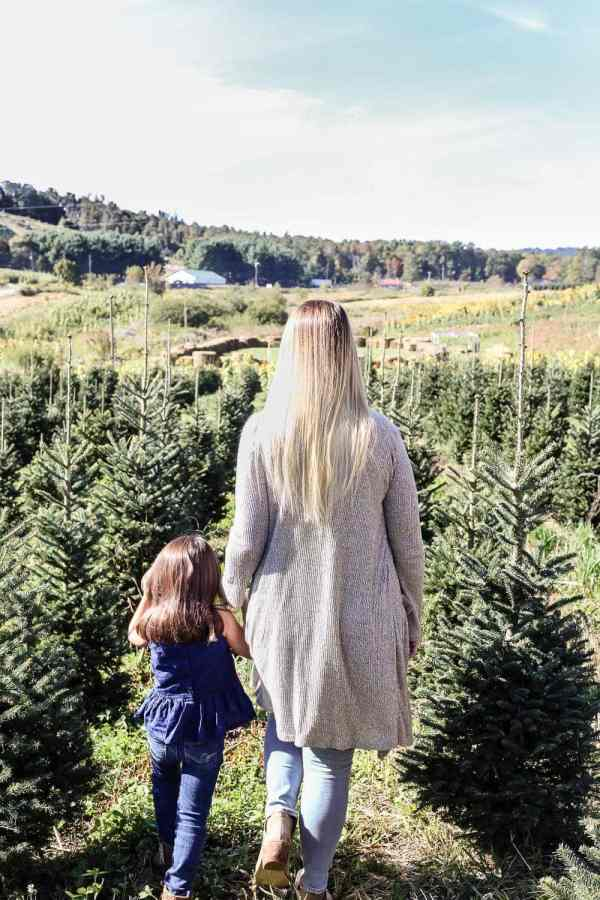 Why We Buy a Real Christmas Tree Every Year | blesserhouse.com - 4 big reasons to buy a real Christmas tree from a lot, farm, or hardware store. #ItsChristmasKeepItReal #ad #christmastree
