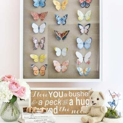 DIY Butterfly Study Shadow Box