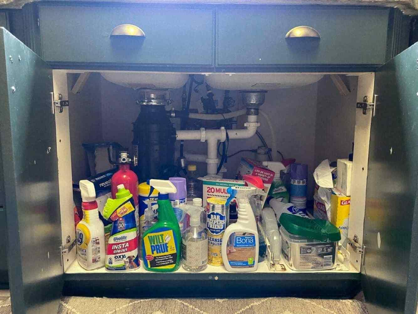 Kitchen Organization Makeover | Under Sink Cabinet Before