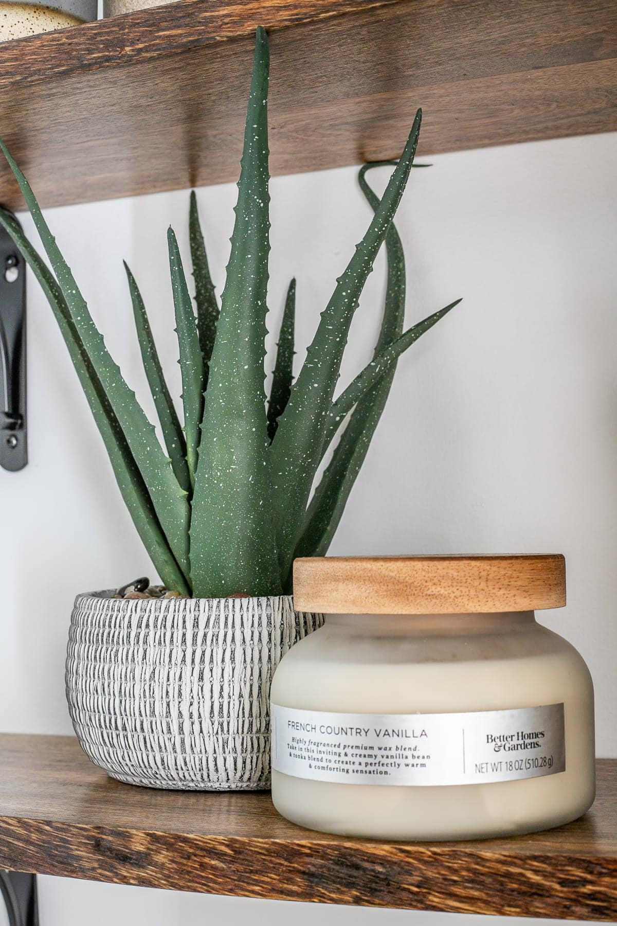 artificial aloe plant and candle