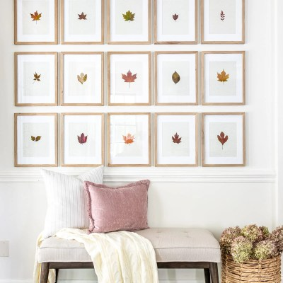 Pressed Leaf Gallery Wall and Fall Entryway