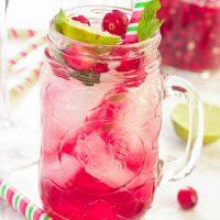 Pomegranate Cranberry Mojito