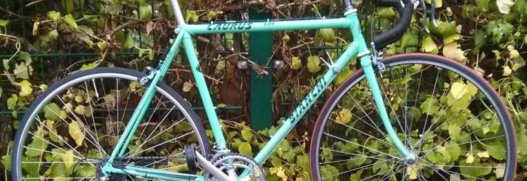 Bianchi Caurus 906