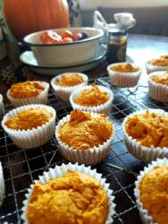 2 ingredient pumpkin muffins