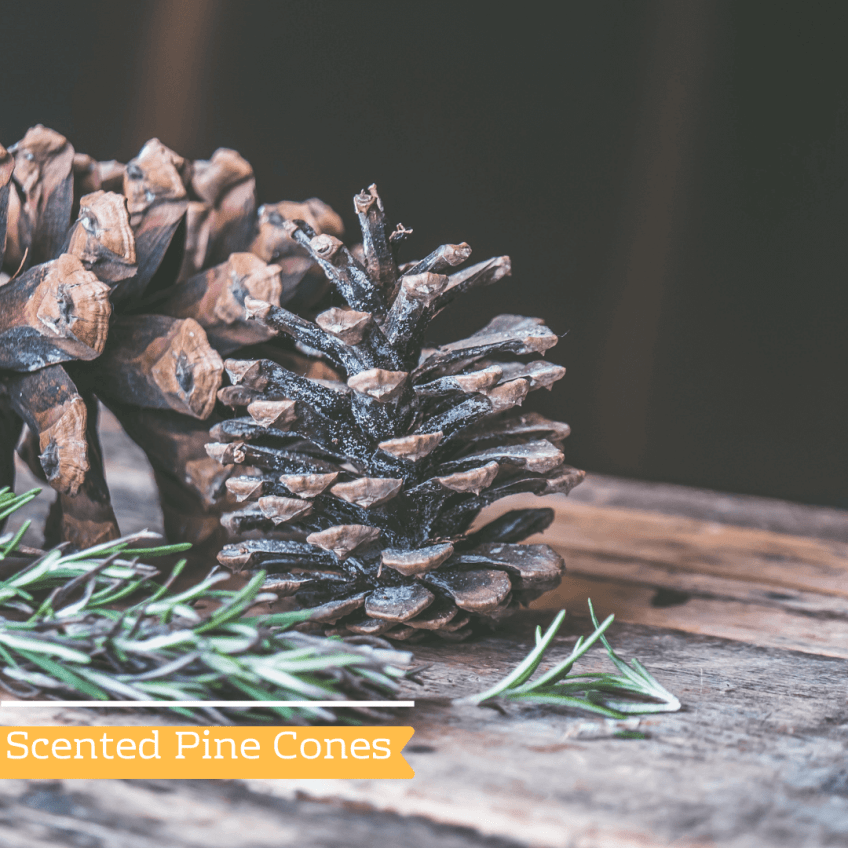 Fall Scented Pine Cones - Make your home smell like fall
