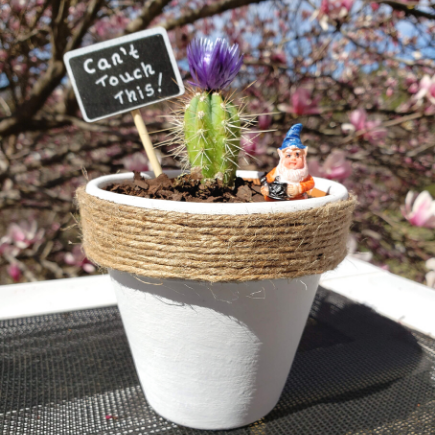 Can't Touch this Flower Pot