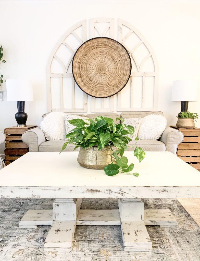golden pothos houseplant as coffee table centerpiece