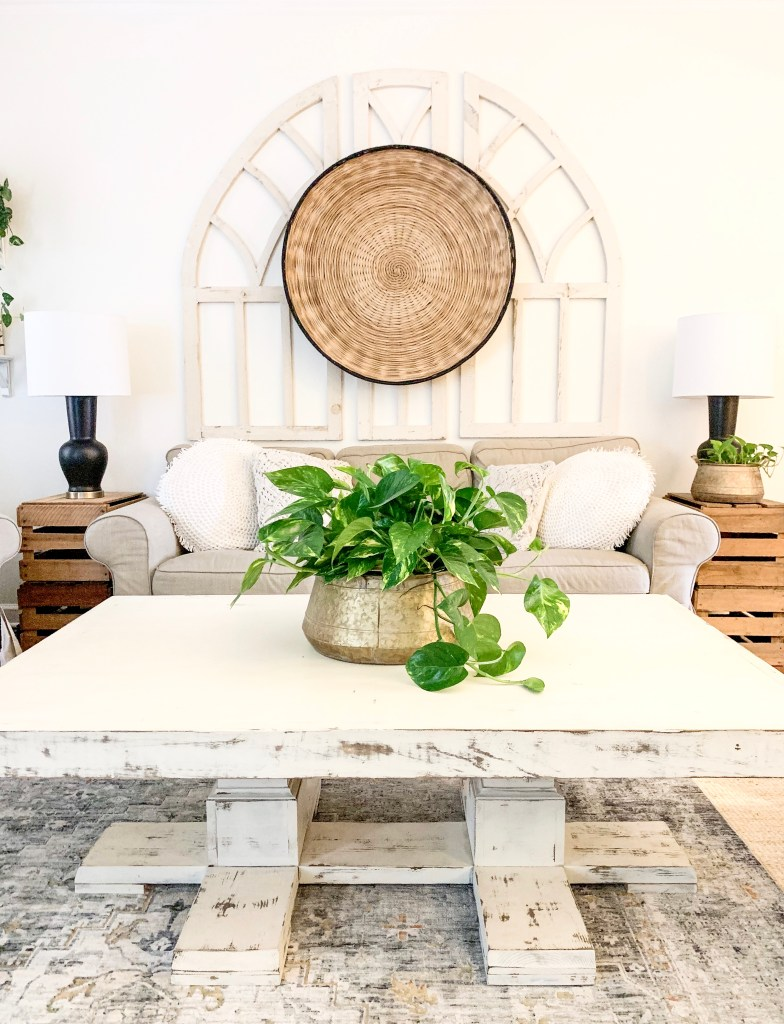 golden pothos houseplant as coffee table centerpiece