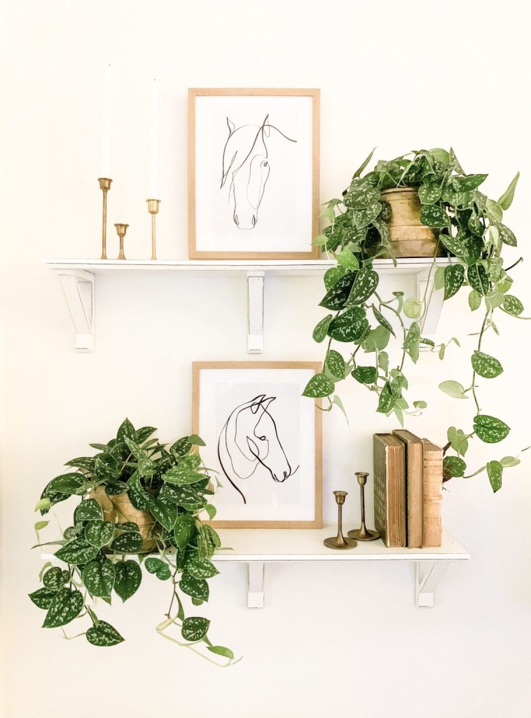 double white shelves with horse prints and greenery decor