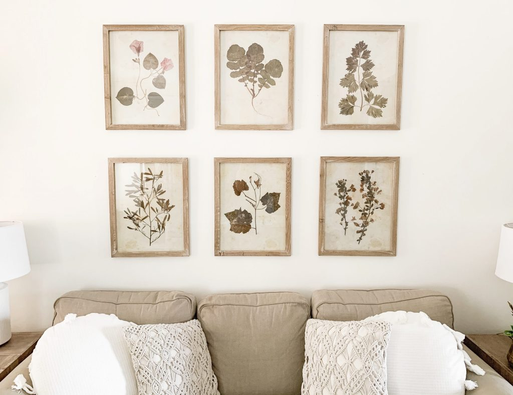 wood and glass frames with botanical print gallery wall