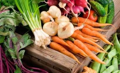 Légumes Filière Paysanne