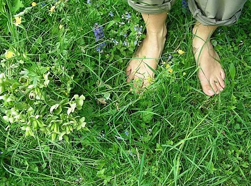 La balade des fleurs à Rognes