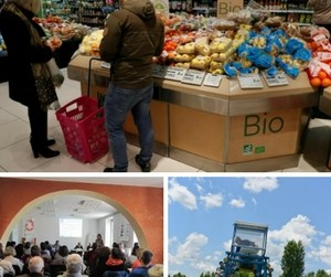 Bio Provence organise une table ronde