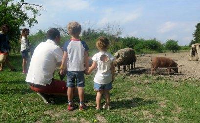 Visite à la Ferme des Grands Cyprès