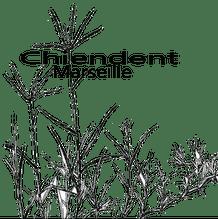 logo asso Chiendent Marseille