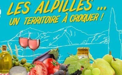 LEs Alpilles un territoire à croquer