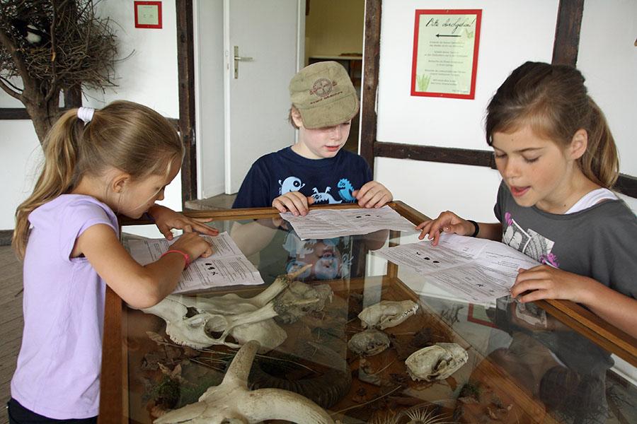 Freikarten für Osterhasenrallye im Wildwald