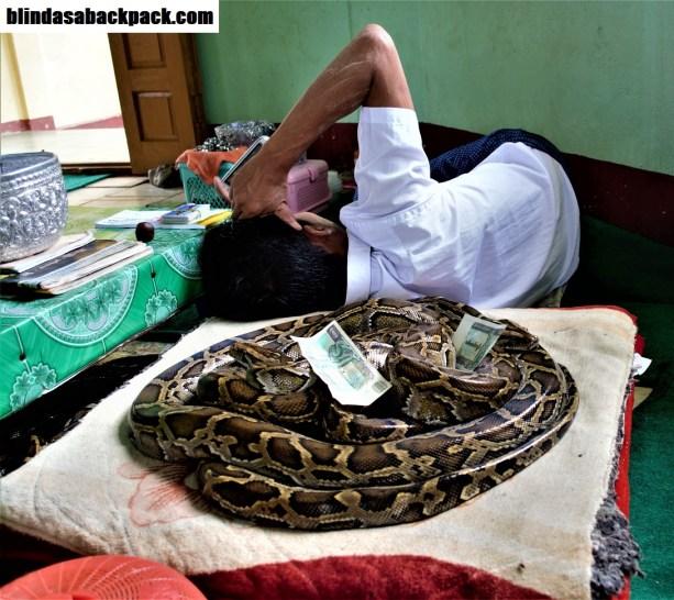 snake-pillow-bab