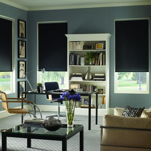 Blinds.com Signature Blackout Roller Shades