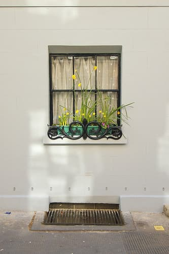 Windowsill via flickr user belfegore