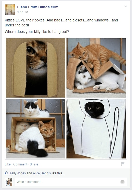 FB Kitties for Meet your Designer