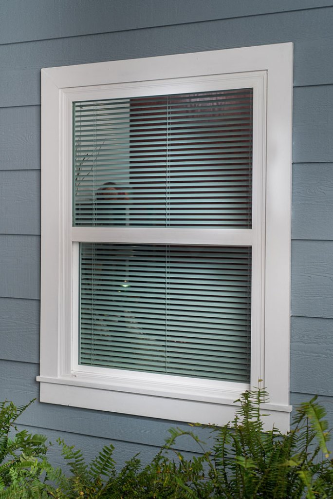 white mini blinds from outside of home